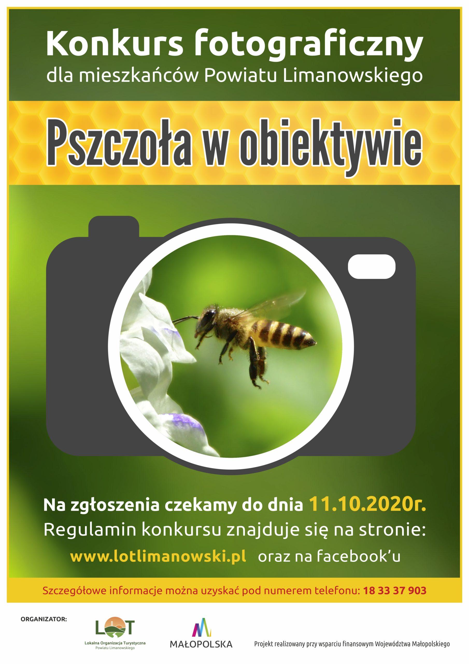 """Lokalna Organizacja Turystyczna Powiatu Limanowskiego zaprasza do udziału w Konkursie Fotograficznym """"Pszczoła w obiektywie"""""""